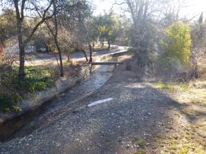 The Auburn Canal!