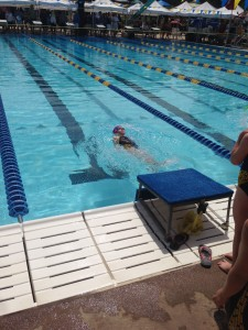 lane 6 backstroke