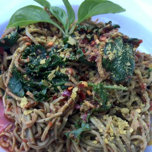 Edamme Pasta with a Red Pepper Basil Pesto