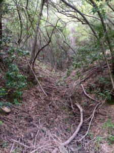 QS Side Trail