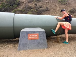Do Not Climb On Historic Gun TWSS